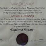 Dyplom ukończenia studiów